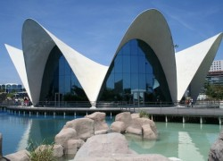 Le Parc Océanographique de Valencia, le plus grand aquarium d'Europe